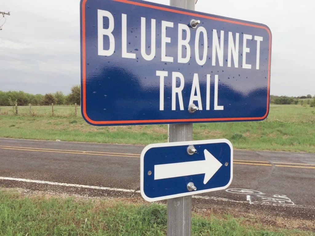 Bluebonnet Trail Festival