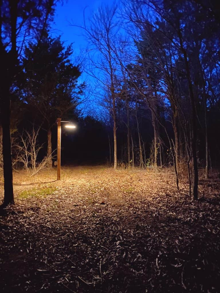 Walking trail at night