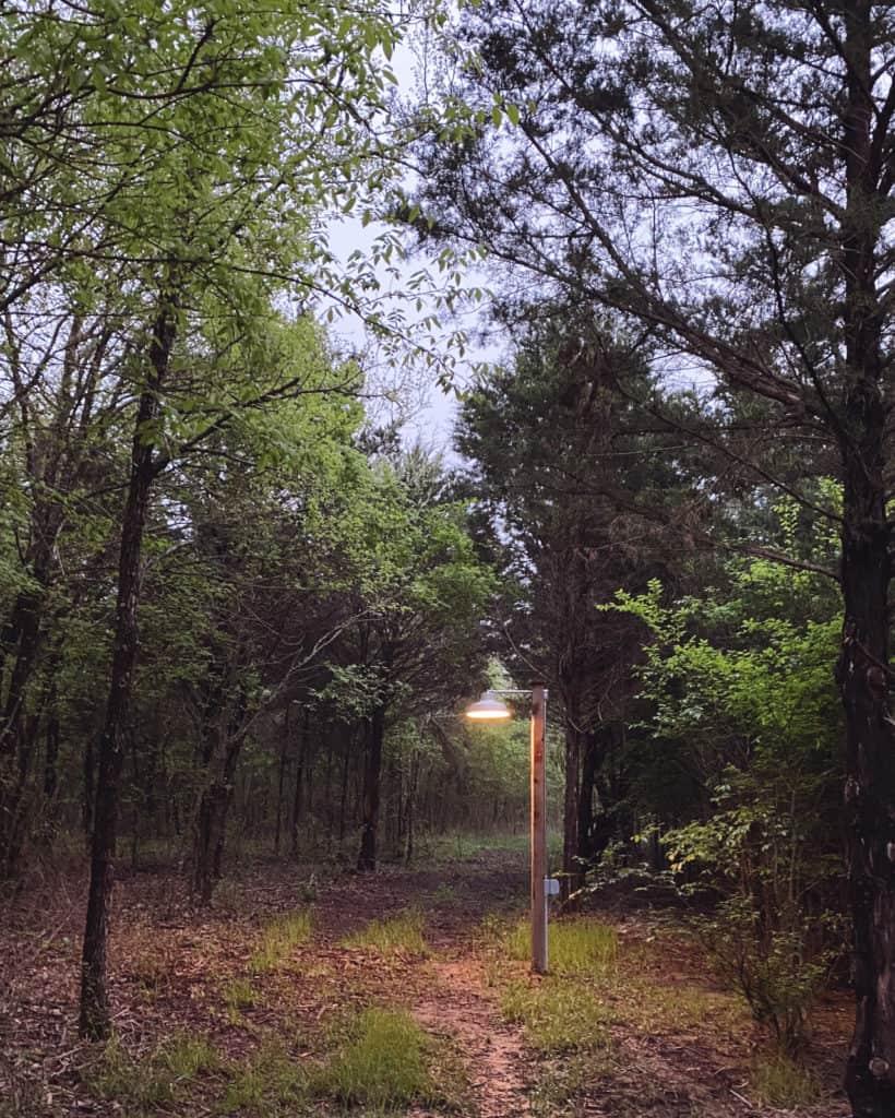 Walking trails through The Range
